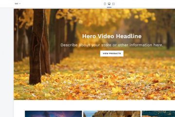 hero background video shopify